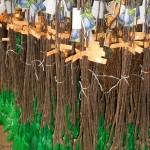 vocne -sadnice-agroplanta-7